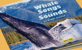 Whale Songs and Sounds